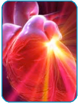 caring-wave-thumb